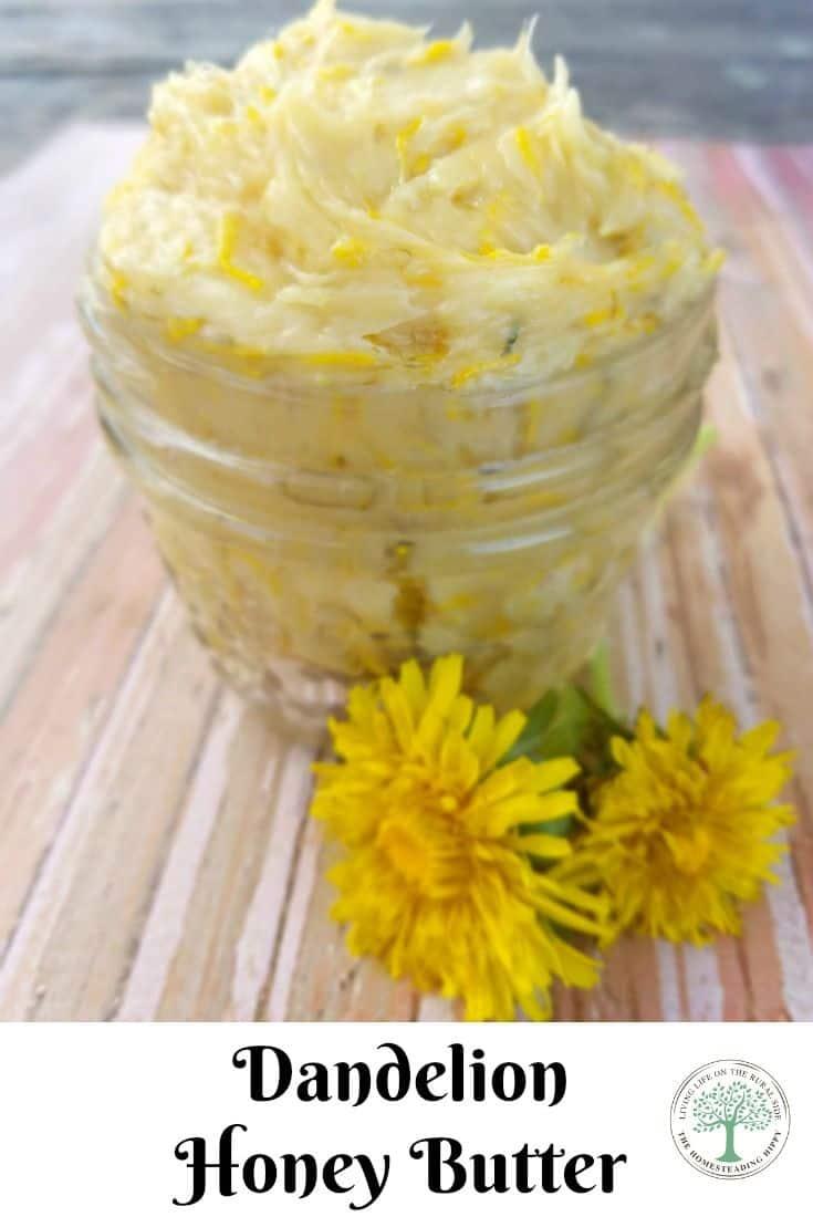 dandelion honey butter pin
