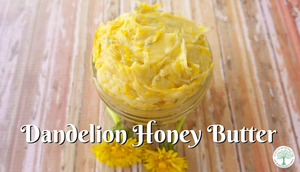 Take advantage of the beautiful yellow blossoms and make this dandelion honey butter! The Homesteading Hippy