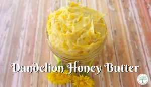 Delicious Dandelion Blossom Honey Butter