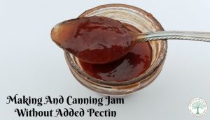 Yes, it's totally possible to make homemade jam without added pectin! Here's how to tell when your jam is ready to can! The Homesteading Hippy