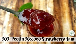 When strawberries are in season, try making strawberry jam! This no pectin recipe is perfect for beginners! The Homesteading Hippy
