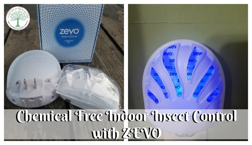 For the BEST in chemical insecticide free indoor flying pest control, try ZEVO! The Homesteading Hippy