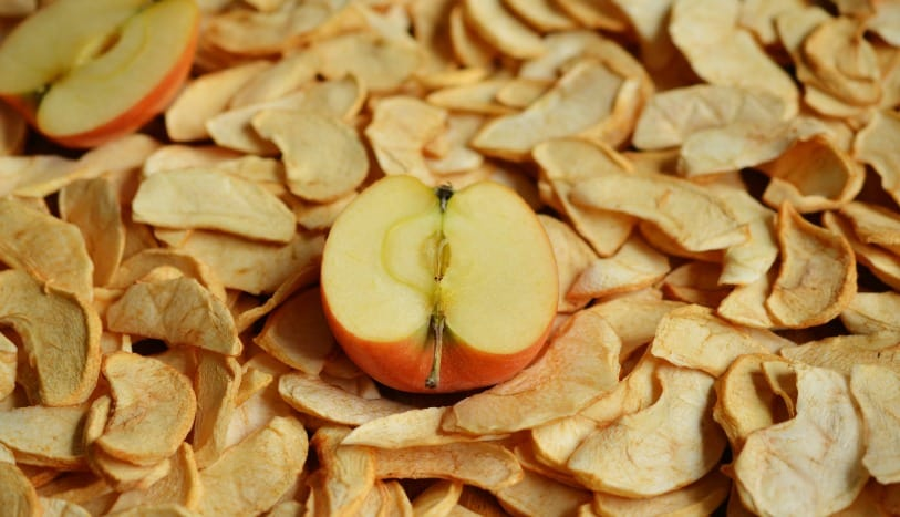 One way to preserve apples is by dehydrating them! The Homesteading Hippy