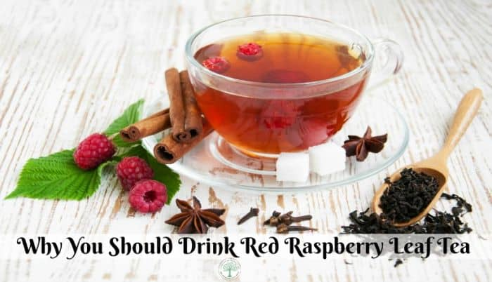 Refreshing summer raspberry tea with fruits and cinnamone