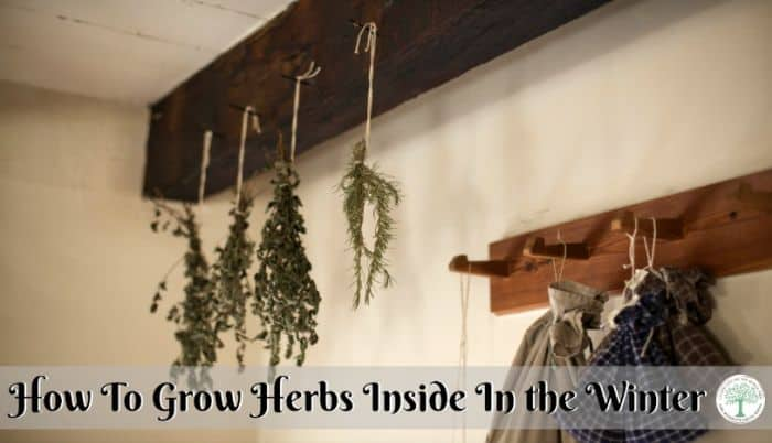 Hanging herbs post