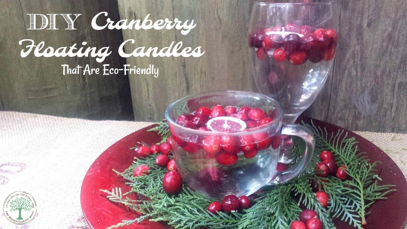 Festive and easy to DIY, try these wonderful smelling cranberry floating candles today! The Homesteading HIppy