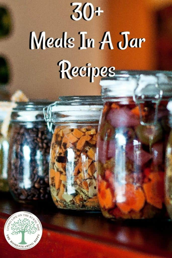 meal in a jar pin