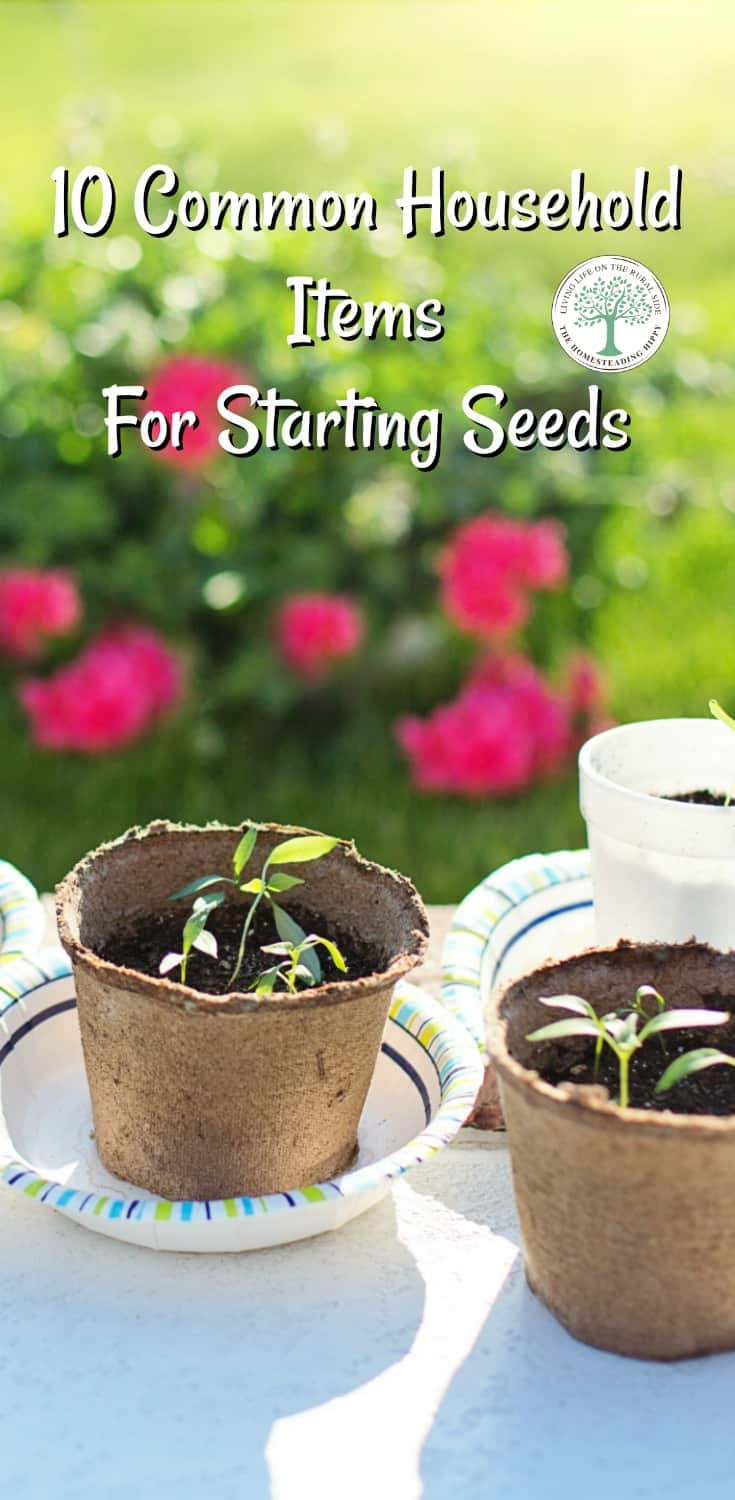 Kick off your garden seedlings this year with these easy DIY seed starters, found all around the house! The Homesteading HIppy