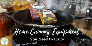 Home Canning Equipment You Need (and where to get it cheap!)