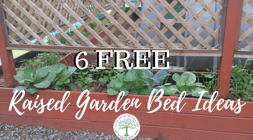 Raised garden beds can help with privacy as well as making more use of your space. Learn how to get them for FREE! The Homesteading Hippy