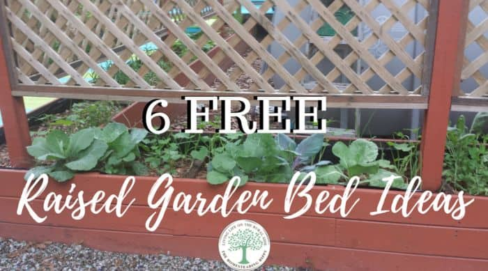 6 Free Raised Garden Bed Ideas