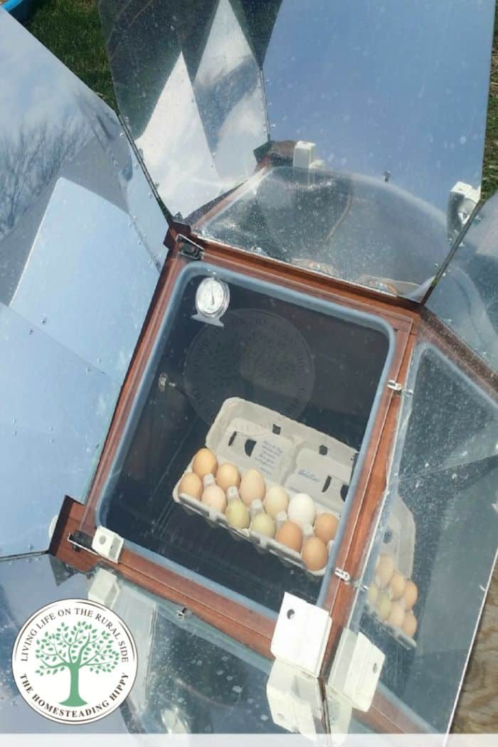 boiling eggs in solar cooker