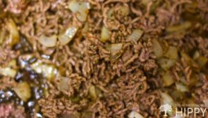 ground lamb, spices and onions