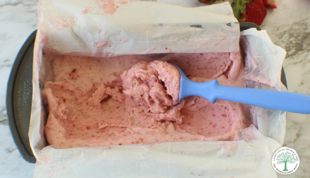 Smooth, creamy and full of all the flavors of summer! This coconut strawberry nice cream is quick, easy to make, and a dairy free ice cream substitute!