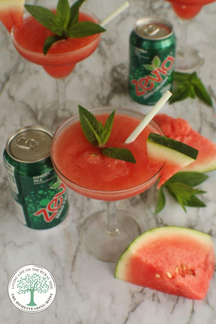 watermelon-mint-mock-a-rita 2