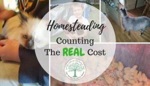 Homesteading costs logo