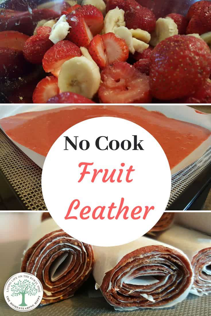 No Cook Fruit Leather