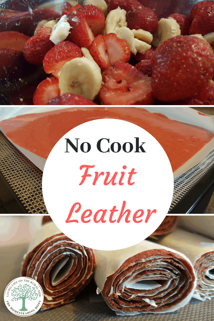 Have a large amount of fresh fruit from the garden or co-op? These no cook fruit leather dehydrator recipes are an easy and healthy snack for your family.