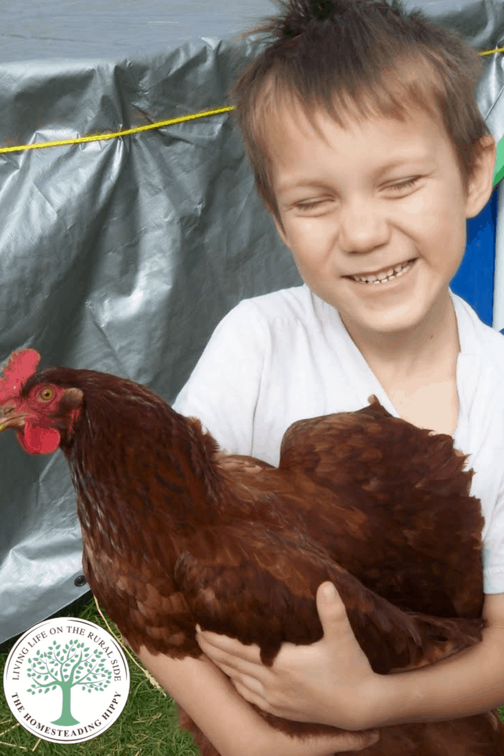 When most people think about homesteading, they have a very different reality from their vision. This story is all about how I didn't count the cost, and how I learned along the way what was REALLY important.