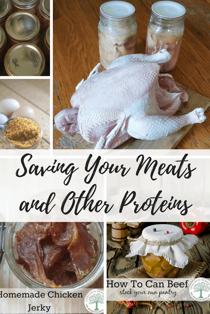 how to preserve meats and other protiens