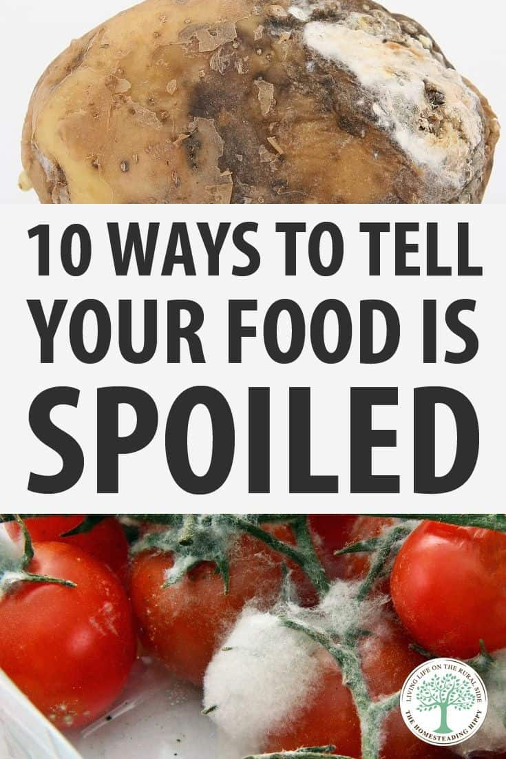 food spoilage signs pinterest