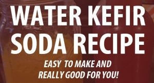 water kefir soda post