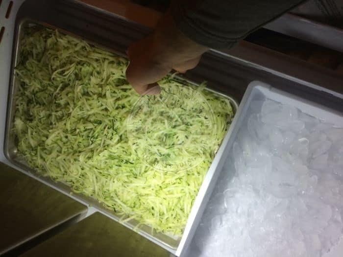 Zucchini Freeze
