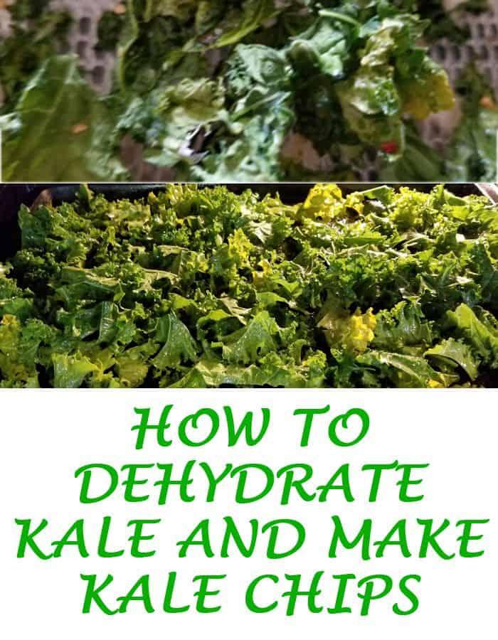 dehydrate kale pin