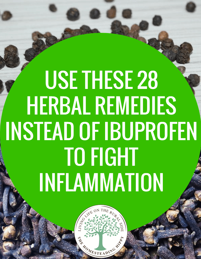 herbal remedies inflammation-pin