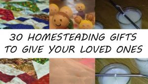 homesteading gifts post