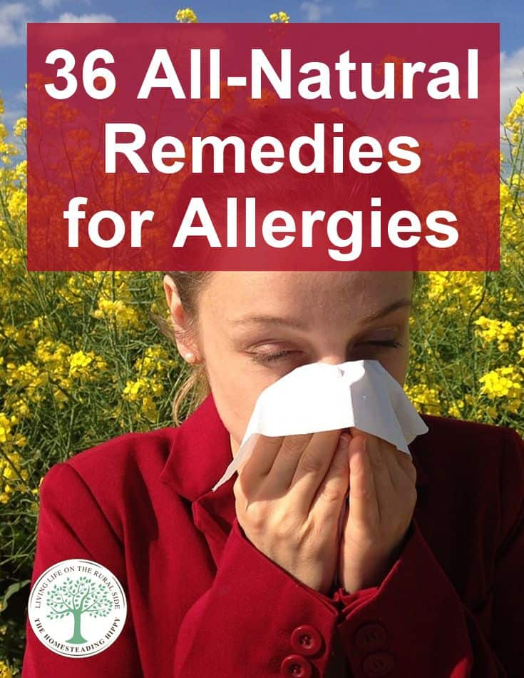 allergies remedies pin