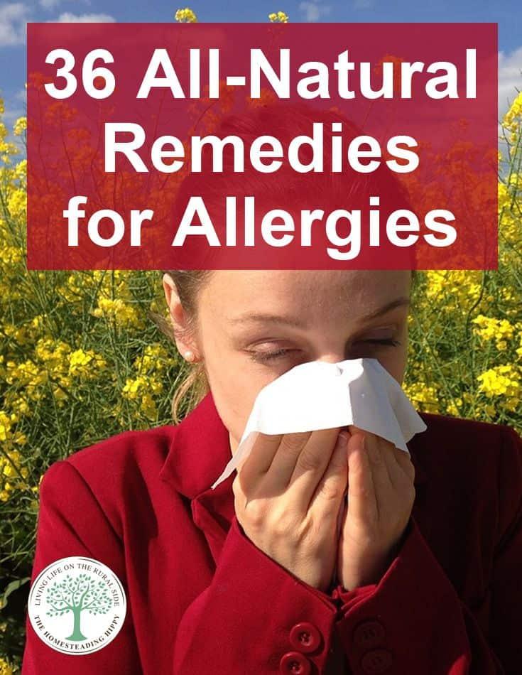 allergies remedies pin