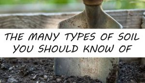 types of soil post