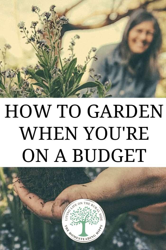 garden budget pin