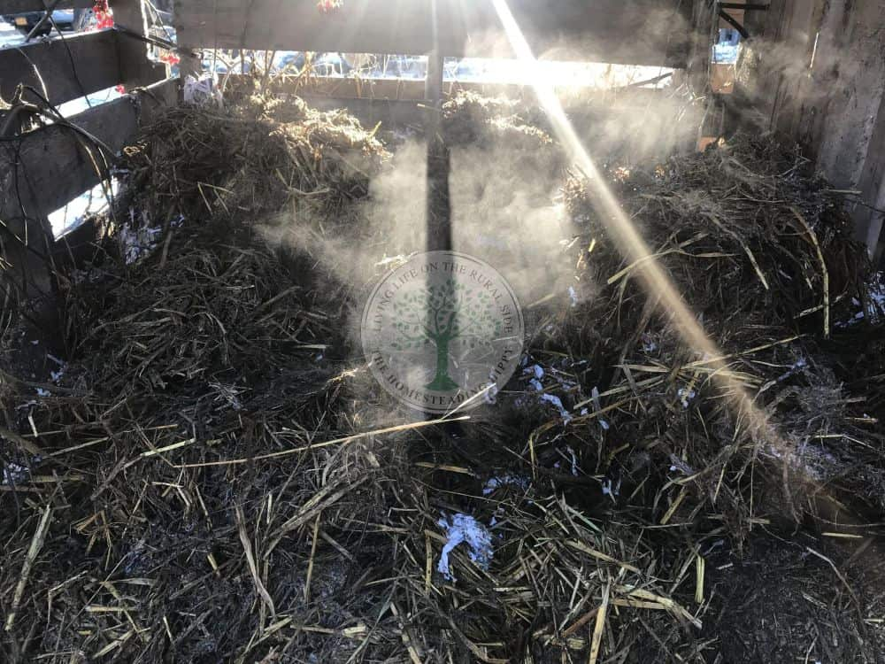 steaming compost bin