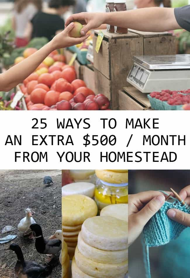 make money homesteading pin