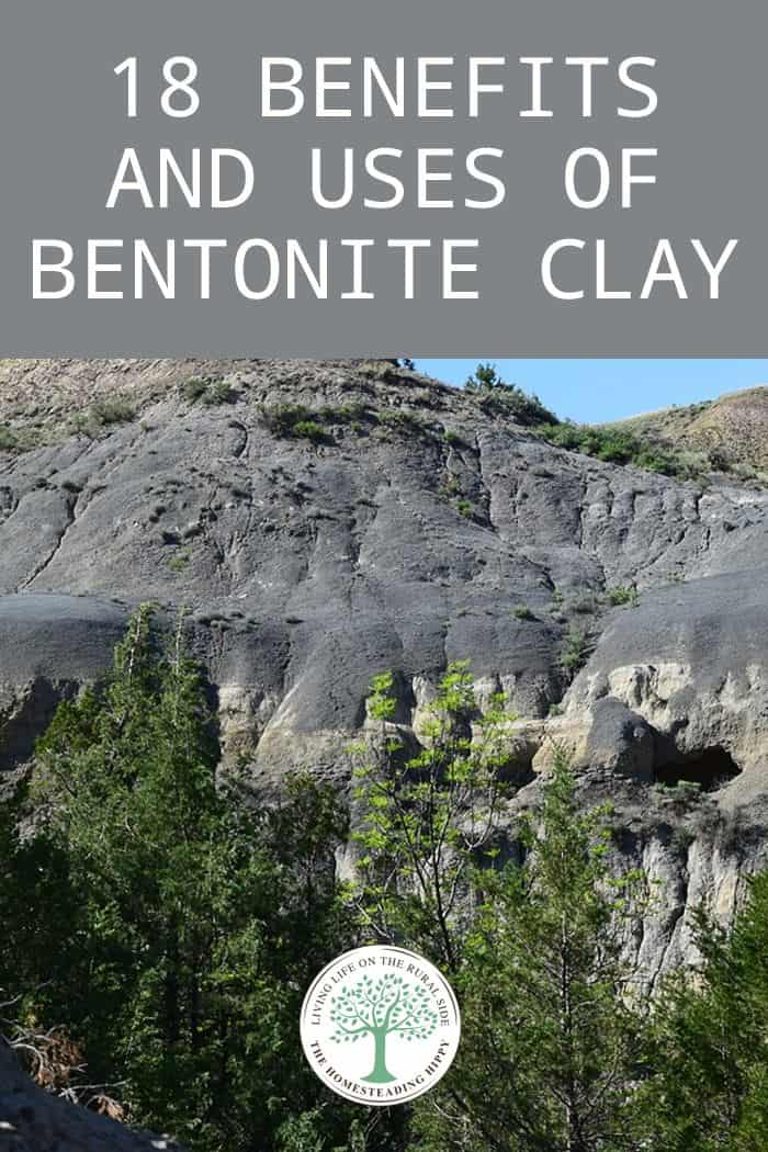 bentonite clay pin