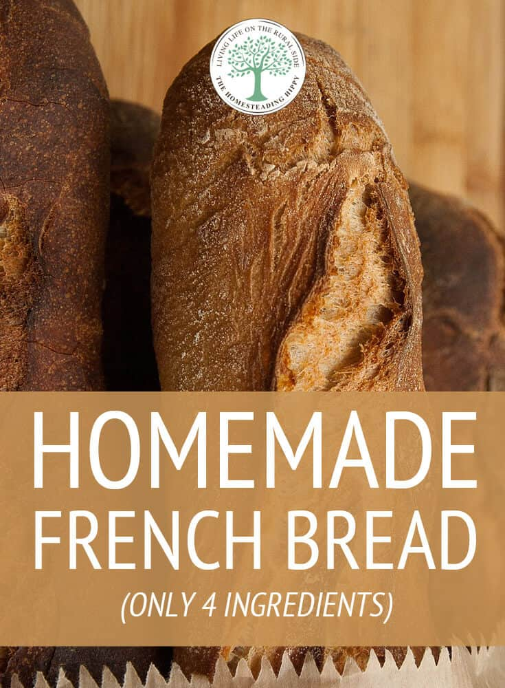 homemade french bread pin
