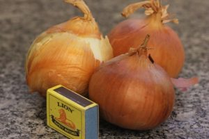 Onions with a matchbox to indicate size