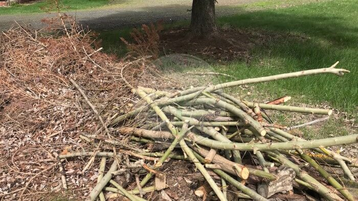Wood Chip Sticks