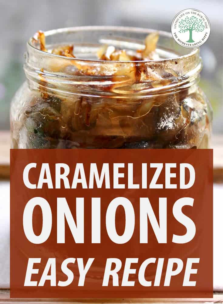 caramelized onions pin