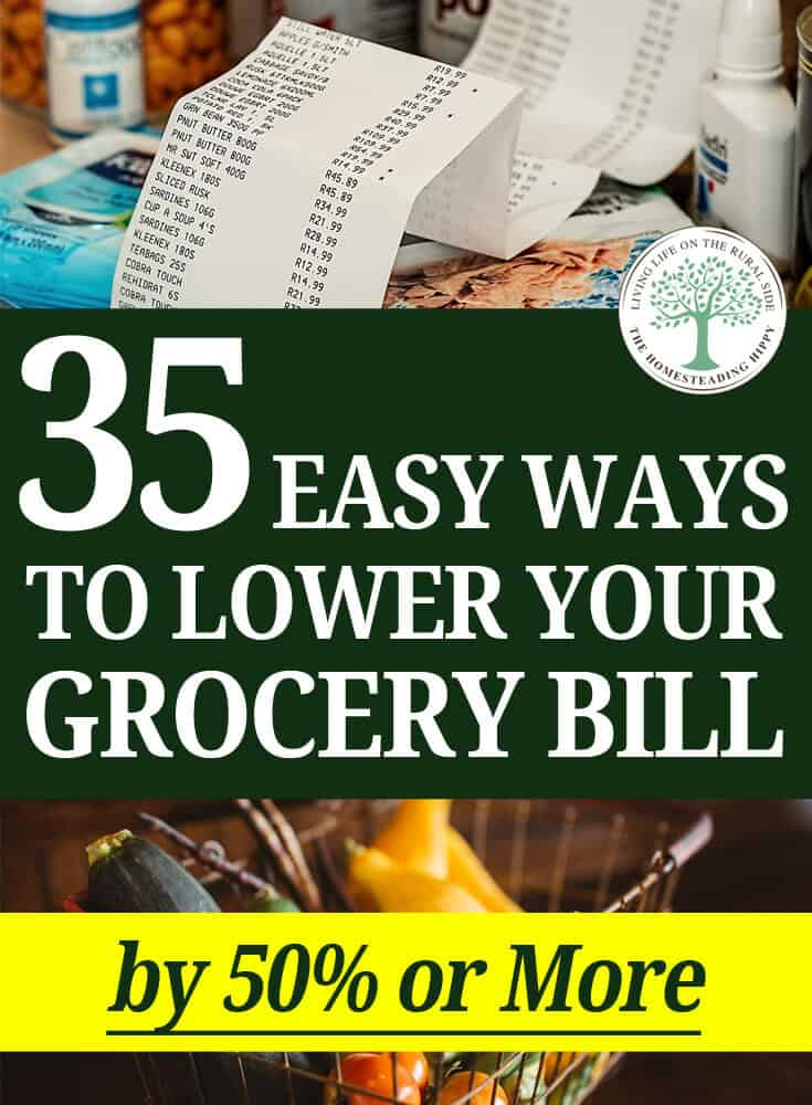 save money on groceries pin