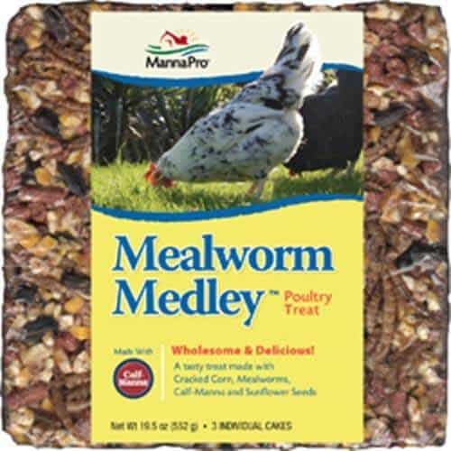 Mealworm Medley Cakes