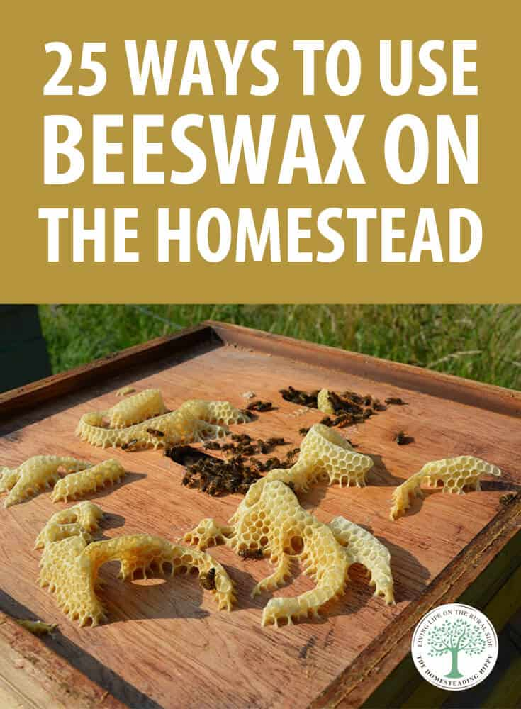 beeswax uses pin