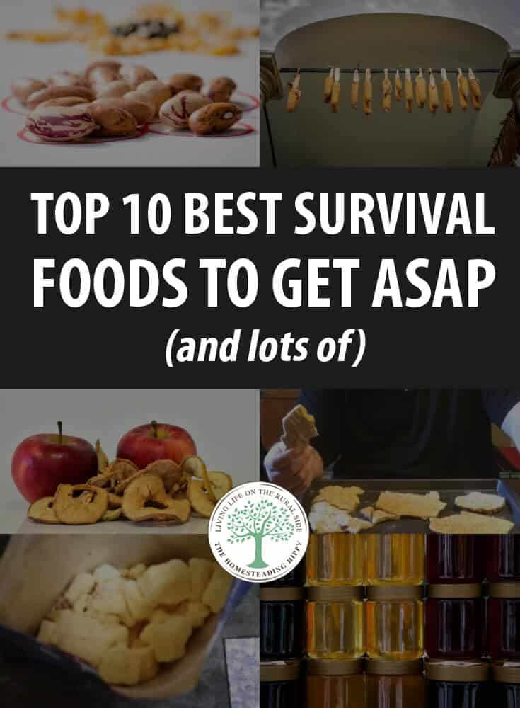 best survival foods pin