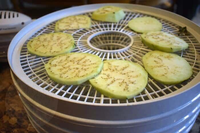 eggplant slices in dehydrator
