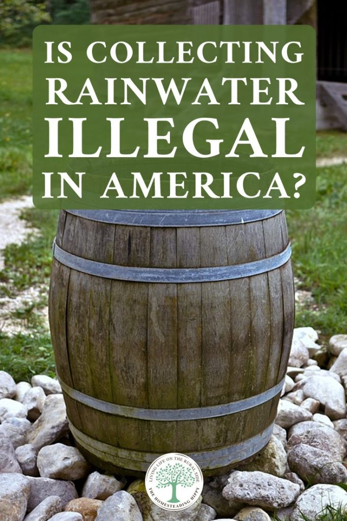 collecting rainwater illegal pin