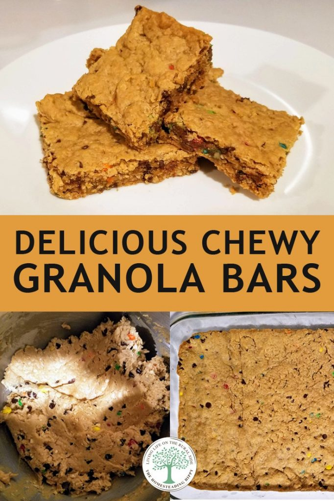 granola bars pin