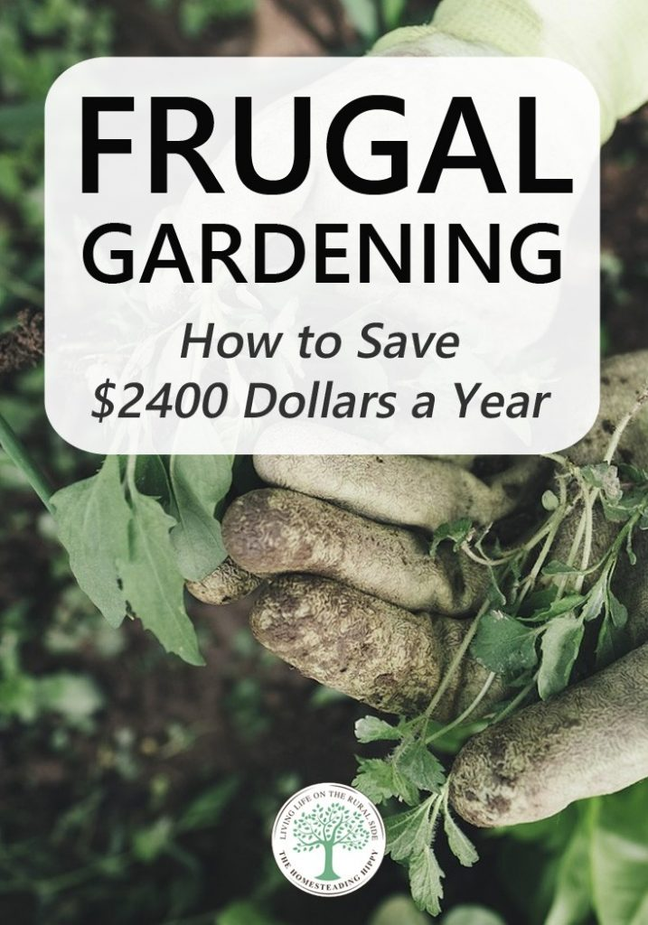 frugal gardening pin
