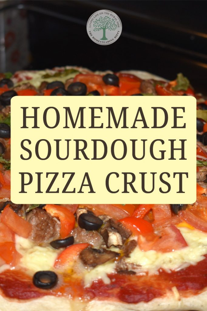homemade pizza crust pin